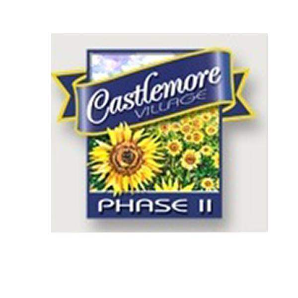 Castlemore Village Phase 2 header image
